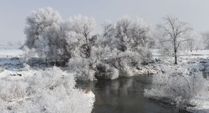 Winter Scene 7862crp Stock Photography