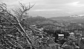 Winter Scene above Sarajevo, Bosnia and Herzegovina. Snow on trees in Sarajevo Mountains Royalty Free Stock Images