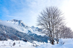 Winter scene in Alps Royalty Free Stock Photo