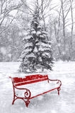 Winter scene, background. Black and white with red element. Royalty Free Stock Photos