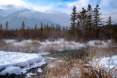 Winter scene in Banff National Park at Vermillion Lakes, in the Canadian Rockies royalty free stock images