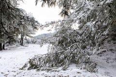Winter Scene. Beautiful Winter Scene At Mountain Stock Photos