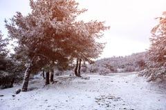 Winter Scene. Beautiful Winter Scene At Mountain Royalty Free Stock Photo