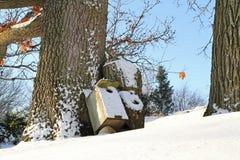 Winter Scene with Bird House in Snow Stock Image