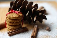 Winter scene.biscuits ties with ribbon. Dried Herbs and Spices like a Christmas background. Christmas Spice Collection. Dried Herbs and Spices like a Christmas royalty free stock images