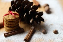 Winter scene.biscuits ties with ribbon. Dried Herbs and Spices like a Christmas background. Christmas Spice Collection. Dried Herbs and Spices like a Christmas stock photos