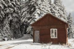 Winter scene, bolu, turkey Royalty Free Stock Image