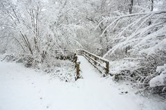 A winter scene of a bridge and surrounding footpath and trees covered in snow in Balls Wood, Hertford Heath, Uk.. Winter scene of a bridge and surrounding Stock Photo