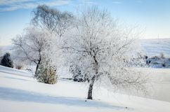 Winter scene in Central Kentucky stock photography