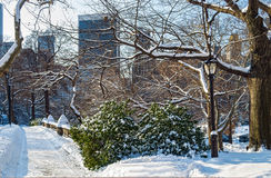 Winter Scene Central Park Royalty Free Stock Photos