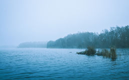 Winter scene of a cold bleak lake and forests Royalty Free Stock Photos
