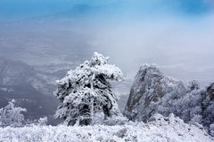 Winter scene in crimean mountains Royalty Free Stock Images