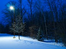 Winter scene at dusk. Street light illuminates trees and snow royalty free stock photography