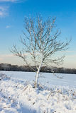 Winter scene in East Grinstead Stock Images