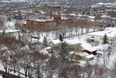 Winter scene of edmonton. Winter scene of the city edmonton, alberta, canada Stock Images