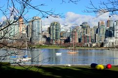 Winter day in False Creek royalty free stock photo