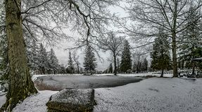 Winter Scene. In Forest Hill Cemetery stock photography