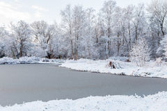 Winter scene with frozen pond and snow on trees on the lakeside int Stock Photo