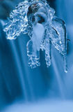 Winter scene icicles above a waterfall Royalty Free Stock Photography