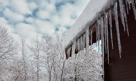 Winter Scene with Icicles Royalty Free Stock Photos