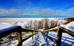 Winter Scene at a Lake Stock Images
