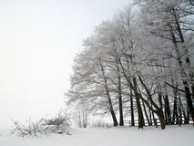 Winter scene Stock Photos