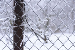 Winter scene of a metal mesh fence royalty free stock images