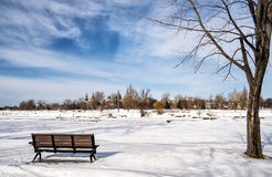 Winter scene. Montreal Quebec Canada Stock Images