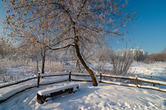 Winter scene in Moscow Stock Photo