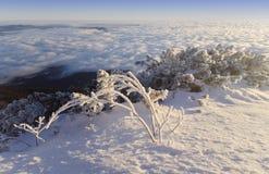 Winter scene mountain landscape Stock Images