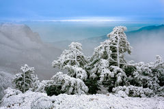 Winter scene in mountains Stock Photography