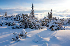 Winter scene in mountains Royalty Free Stock Images