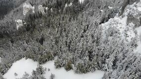 Winter scene in the mountains of Romania above forest. Aerial view stock video footage