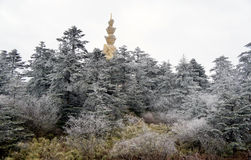 Winter scene at mt. emei Stock Photo