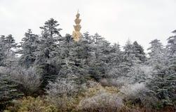 Winter scene at mt. emei. Winter scene of the  golden buddha  at  emei mountain Stock Photo
