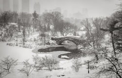 Winter scene in New York City: Snowstorm in Central Park. Central Park's Pond and Gapstow Bridge during a snowstorm. Ducks are huddling against the cold of the Stock Images