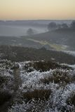 Winter scene over moor Royalty Free Stock Image