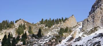 Rocky mountains of Zaili Alatau covered by snow with line of pine trees forest. Winter scene of peaks in Kazakhstan Stock Images