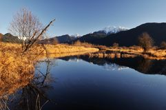 Winter scene of pitt lake Royalty Free Stock Photo