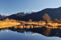 Winter scene of pitt lake Royalty Free Stock Images