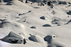 Winter Scene at the San Pellegrino pass Royalty Free Stock Images