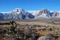 Winter scene on Sandstone Bluffs in Red Rock Canyon. Image shows the Sandstone Bluffs in Red Rock National Conservation after a winter storm. The area, commonly royalty free stock photos