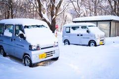 Winter scene Sapporo, Hokkaido, Japan. Winter scene at Hokkaido University during heavy snowing Royalty Free Stock Photography