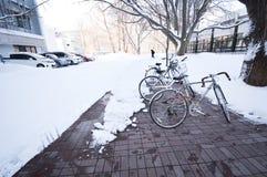 Winter scene Sapporo, Hokkaido, Japan. Winter scene at Hokkaido University during heavy snowing Stock Images