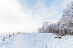 Winter scene with snow on the Dutch Posbank Stock Images