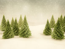 Winter scene snow and green pine trees Royalty Free Stock Image