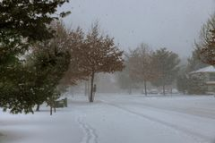 Winter scene of a snow storm in this Central New Jersey neighborhood. Royalty Free Stock Images