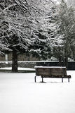 Winter scene - snowfall in the park. Winter park scene during a snowfall - bench and trees covered by snow Royalty Free Stock Photos