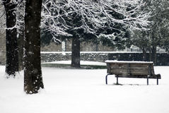 Winter scene - snowfall in the park. Winter park scene during a snowfall - bench and trees covered by snow Stock Photography
