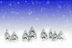Winter scene with snowy pines. Lots of copy space Royalty Free Stock Photo